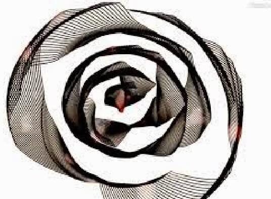 rosa cinza - miriam salete